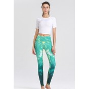 ZYG1307a-Lady Quick Drying Running Fitness Yoga Leggings